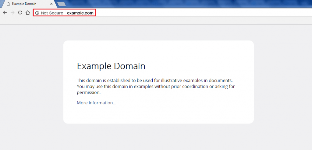 A screenshot of the example.com sample URL page featuring the URL enclosed in a red-colored box.